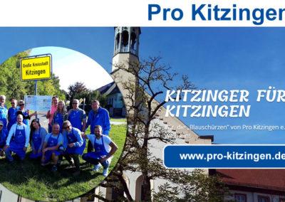 Pro Kitzingen e.V.